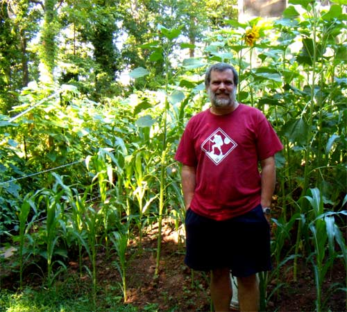 Here I stand in front of the new plot July 18. Behind me are Corn and Sunflowers. On the left, see the supports and Tomato, Bean, Cucumber, and Bell Pepper vines. The Sunflower above my head is the one in the photos above.